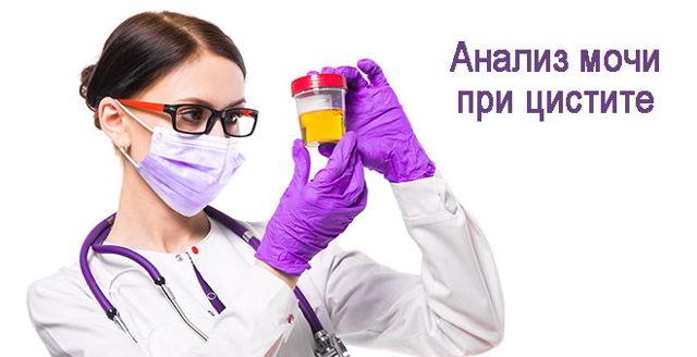 Ученые занялись поиском эффективного лечения цистита