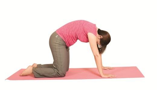 Упражнения для почек: гимнастика, йога и лечебная физкультура