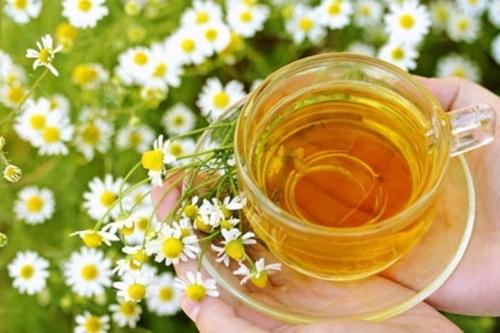Травы при цистите: травяные сборы, фитотерапия для лечения женщин
