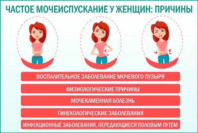 Постоянно хочется в туалет по маленькому: норма, болезненные и безболезненные причины, лечение