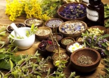 Урологический травяной чай при цистите