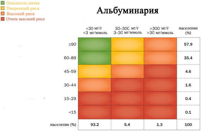Микроальбумин в моче (микроальбуминурия): норма, расшифровка, причины, как правильно собрать и сдать анализ