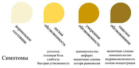 Ярко желтая моча у женщин, мужчин и детей: причины и как привести цвет в норму