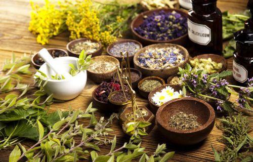 Почечный чай: состав, полезные свойства и противопоказания