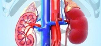 Пиелоэктазия правой и левой почек, симптомы, диагностика, лечение