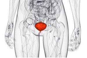 Паранефрит: причины, симптомы, диагностика, лечение и осложнения