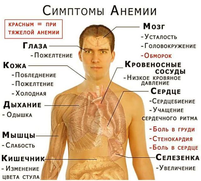 Сколько живут на гемодиализе: факторы влияющие на продолжительность жизни