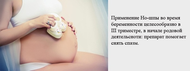 Но шпа при цистите у женщин: как принимать, отзывы специалистов и больных
