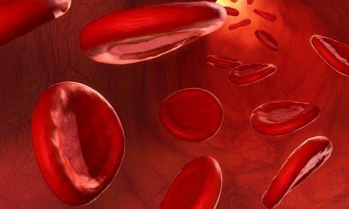 Какие анализы нужно сдать при цистите женщине: исследования мочи, крови, бакпосев