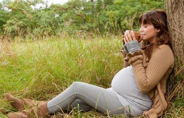 Почечный чай при беременности: инструкция к применению и отзывы