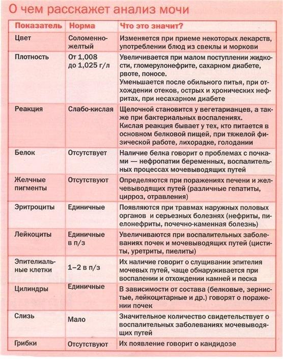 Анализ мочи при остром гломерулонефрите: изменения в общем исследовании, методике по Нечипоренко