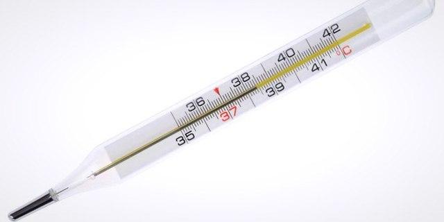 Стриктура мочеточника: причины, симптомы, диагностика и лечение