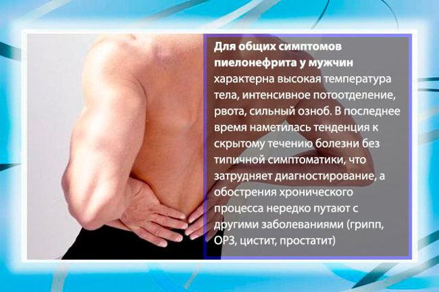 Пиелонефрит у мужчин: симптомы и лечение, препараты и народные средства