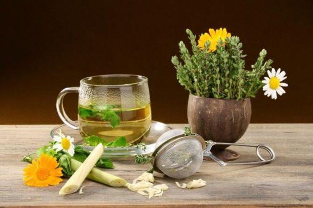 Как почистить и промыть почки препаратами и пихтовым маслом