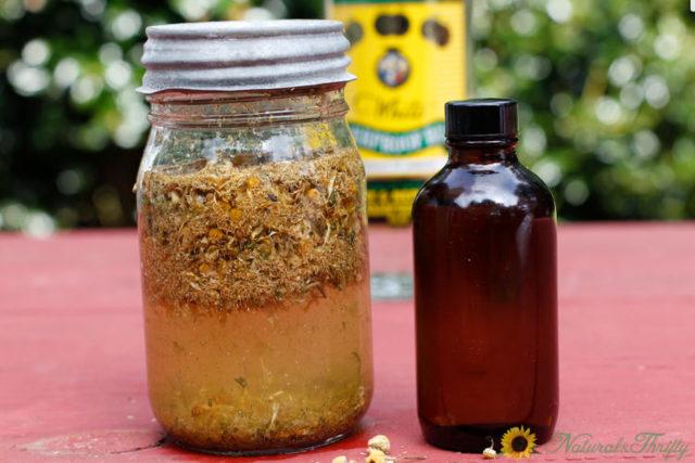 Ромашка аптечная: лечебные и полезные свойства, рецепты, противопоказания