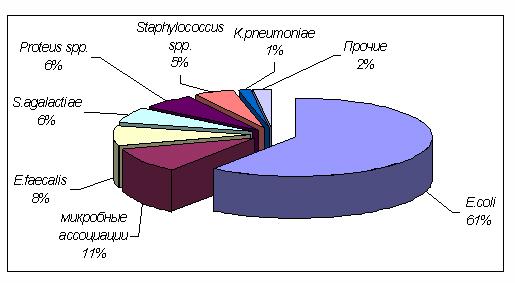 Необструктивный хронический пиелонефрит связанный с рефлюксом