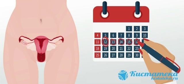 Аденома надпочечника у мужчин и женщин: симптомы, лечение и осложнения