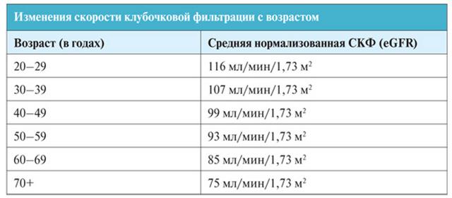 Что такое скорость клубочковой фильтрации (скф) - формула расчета, норма, расшифровка данных