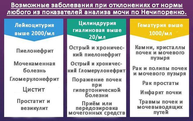 Анализ мочи по Нечипоренко -  как сдать пробу, расшифровка и норма