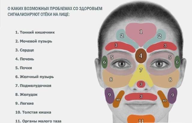 Мочегонные средства при отеках: лица, ног, глаз и побочные действия