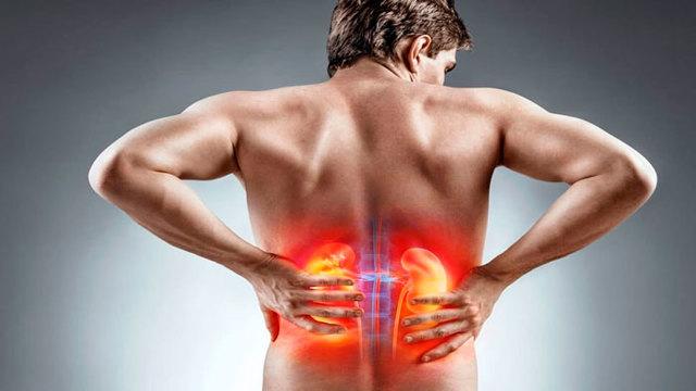 Что делать если болят почки, симптомы и лечение заболевания